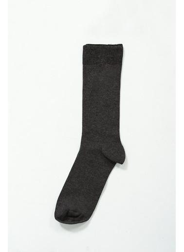 Collezione Çorap Gri